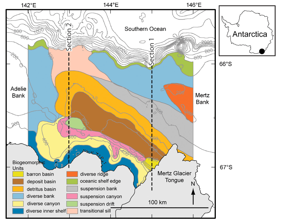 Bathymetry (contours) and biotopes (colours) of the George V Land shelf, Antarctica, after Beaman and Harris (2005).