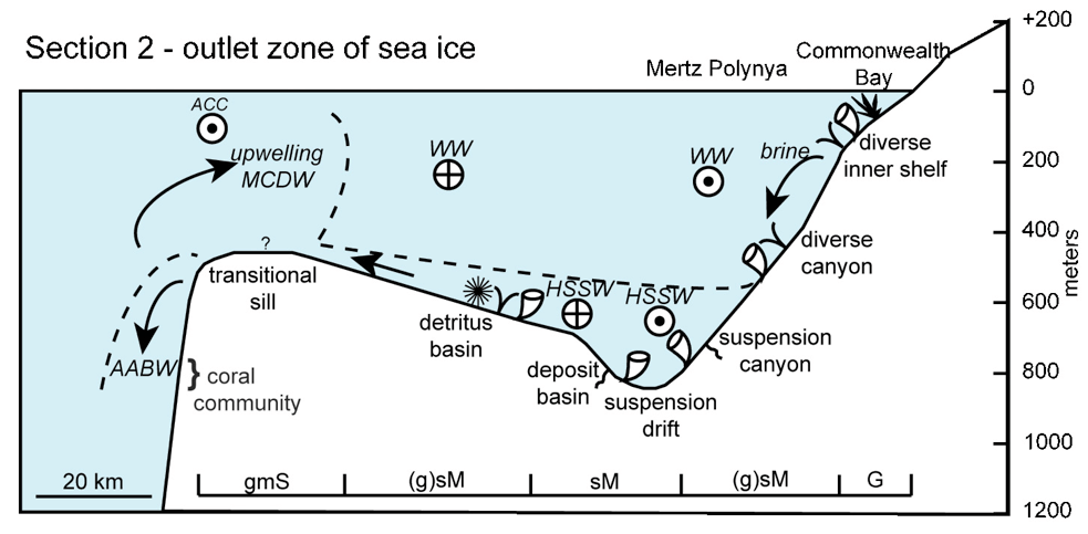 Profiles shown in Sections 1 and 2 show the occurrence of different biotopes in relation to depth, currents and water masses